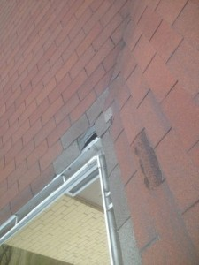 Squirrel Damage on Roofline