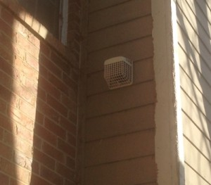 wildlife bird solutions - attic vents and dryer vents